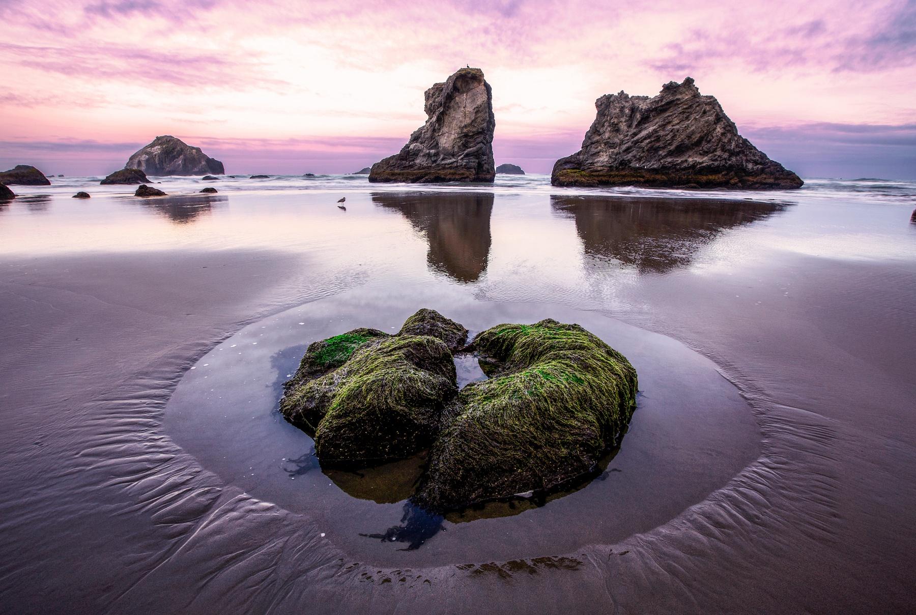 Alex-Vision-Photography-CG-Pro-Prints-Composition-Nature (10)
