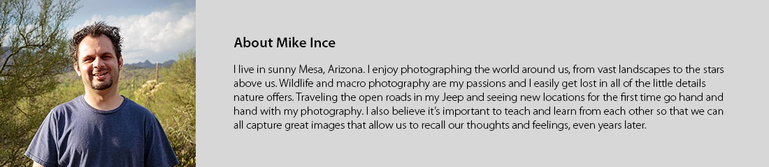 Ince_Bio_17.jpg