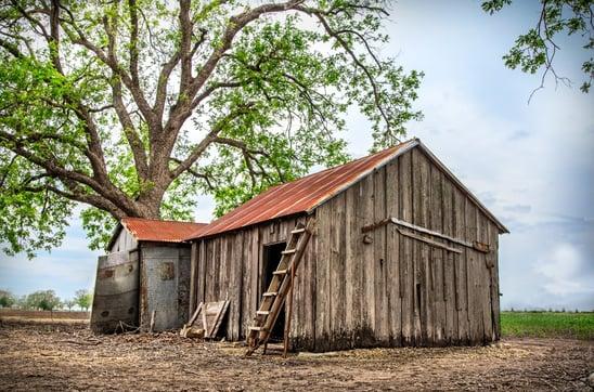 Barns-and-more-web-3.jpg