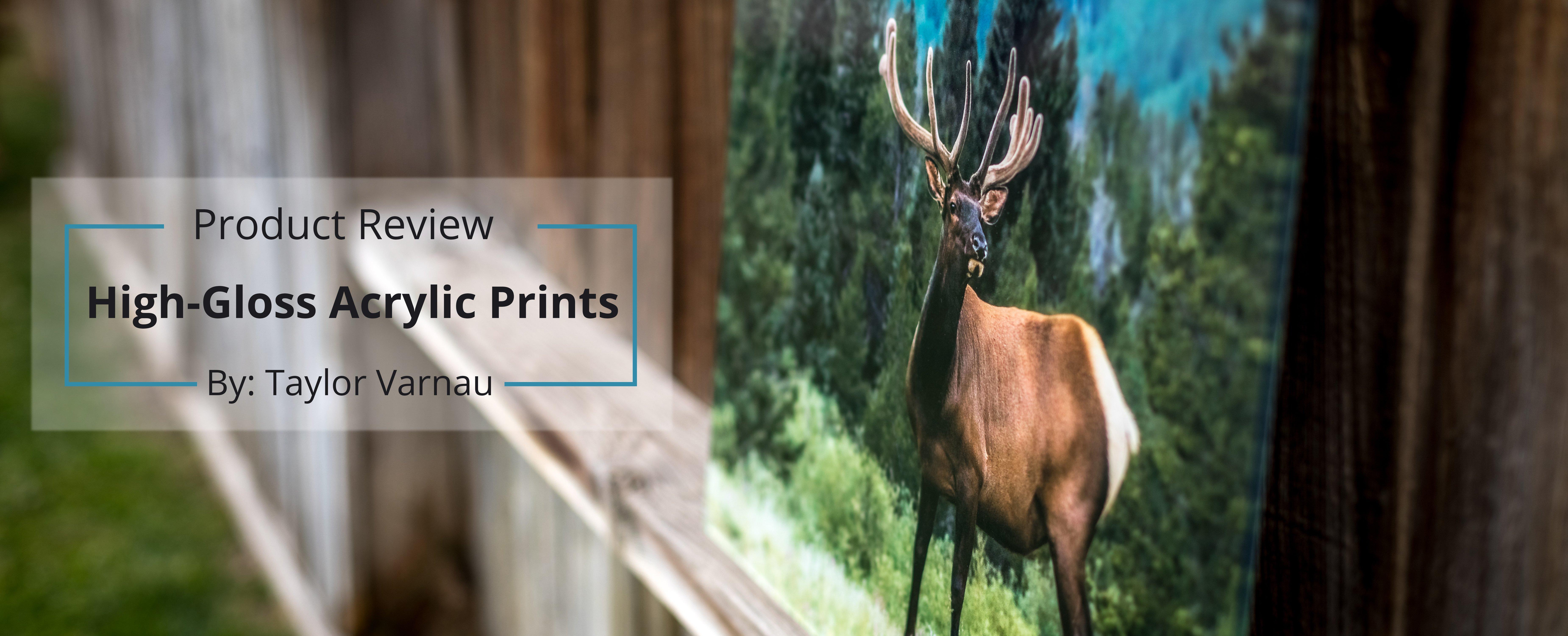 acrylic-cgproprints-review-taylor-varnau