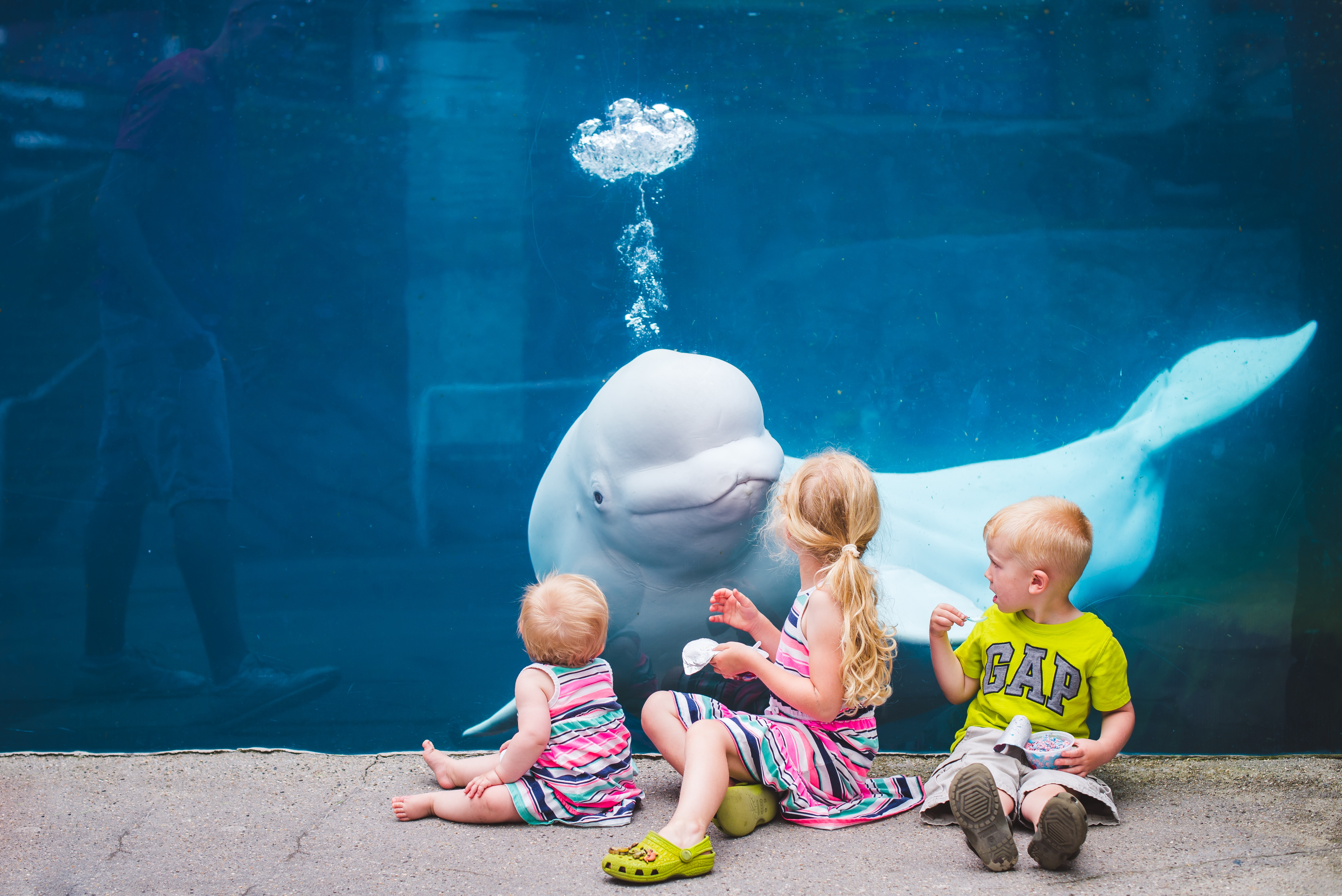 Kristen Alise Photography beluga whale childrens portrait